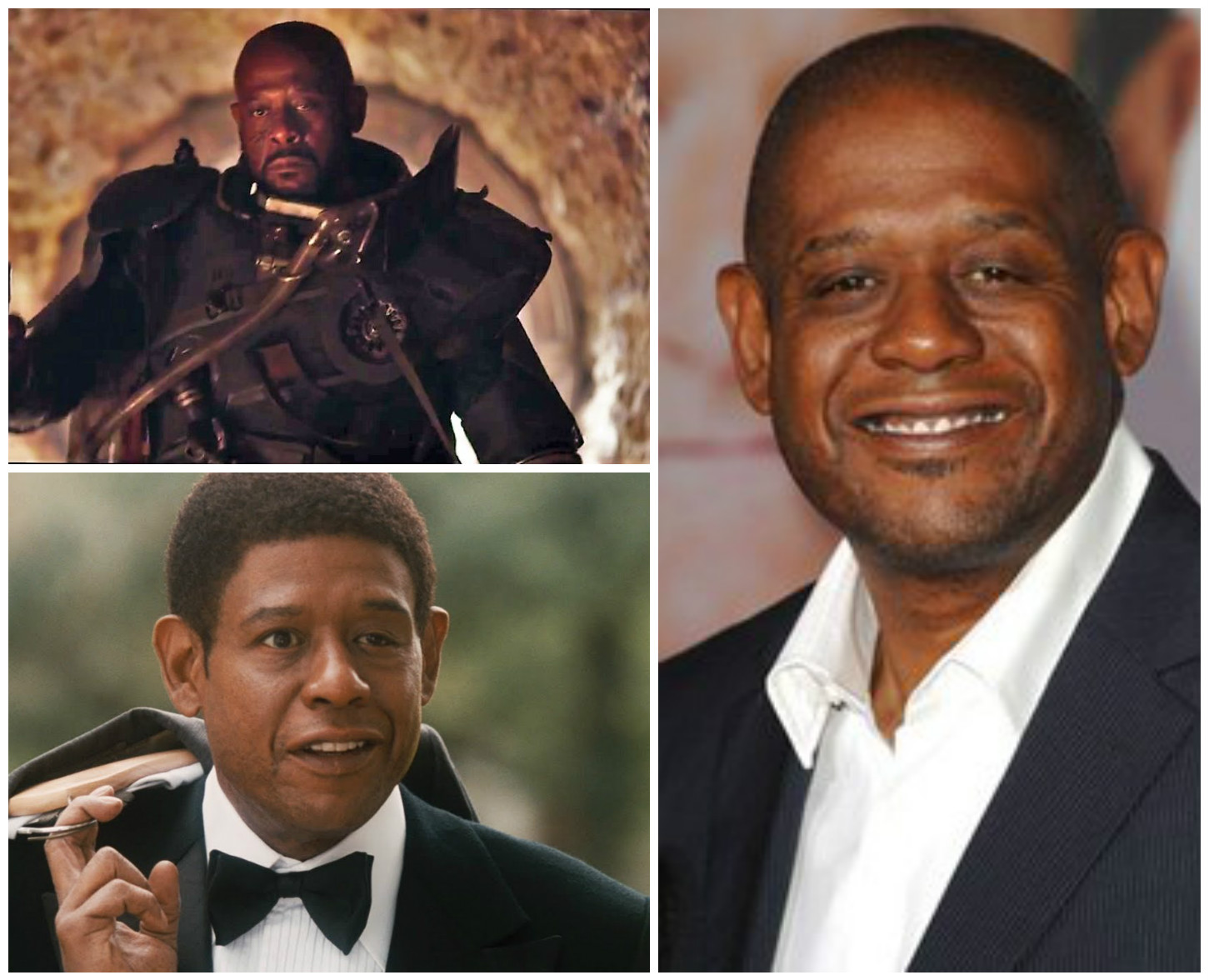 panel-forest-whitaker