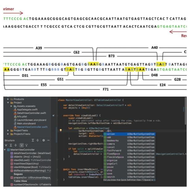 dna vs code.jpg